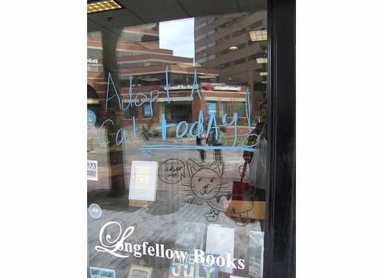 Longfellow Books adopt-a-cat